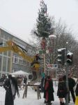 db_20100211_Narrenbaumstellen__13_1