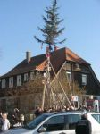 db_20110303_Narrenbaumstellen__2_1